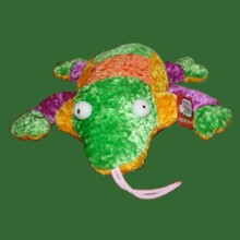 Healthy Critters - Frog 91014 Frog