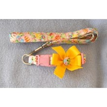 Easter Egg Collar & Leash Set   [cm] 12067F