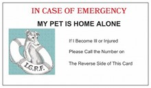 "Emergency Cards  ""My Pet is Home Alone"" [mn] 29103"