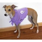 Sweater Shawl Amethyst  Sweater Shawl PUPPIA size L [cm] 60042L