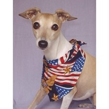 Assorted Bandanas - 4th of July, Halloween, MORE! [cm] 14201 A